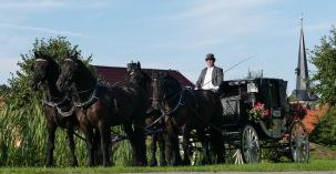 Hochzeitskutsche 4-Spänner